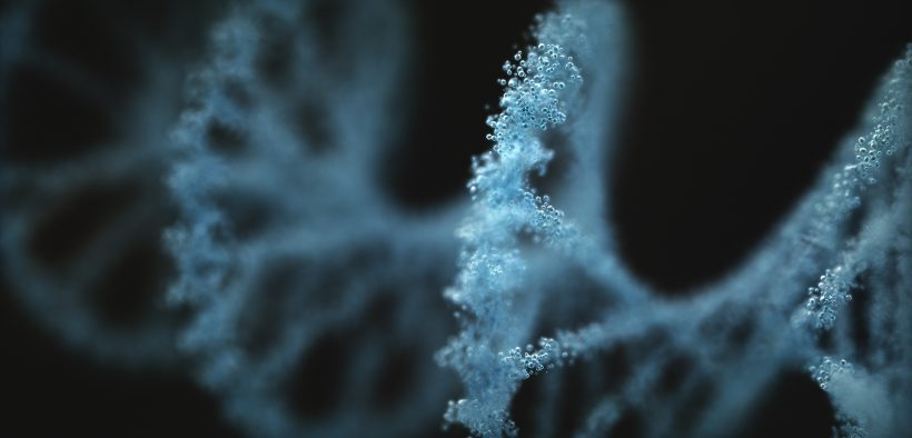 Image of a 3D rendering of DNA for Viral Change in Organizations blog post