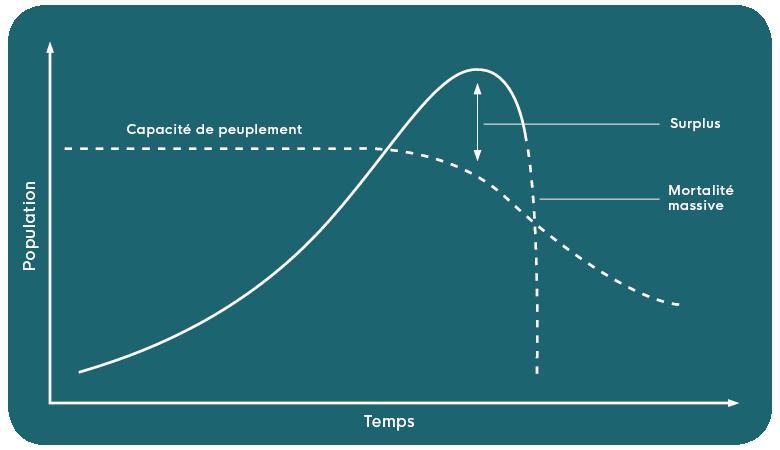 """Cette image illustre la capacité de charge de la Terre avec """"temps"""" représenté sur l'axe des x et """"population"""" sur l'axe des ordonnées."""